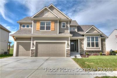 Kansas City Single Family Home For Sale: 10524 N Randolph Avenue