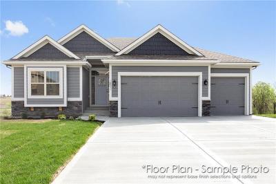 Kansas City Single Family Home For Sale: 10515 N Randolph Avenue