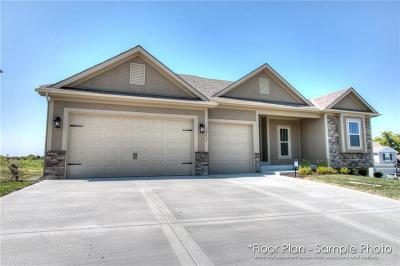 Kansas City Single Family Home For Sale: 10528 N Randolph Avenue