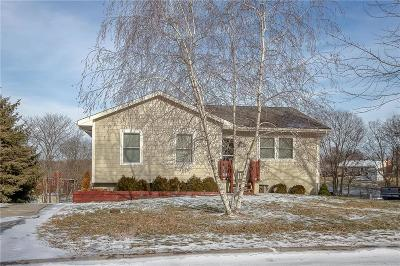 Excelsior Springs Single Family Home For Sale: 613 Kimberly Drive