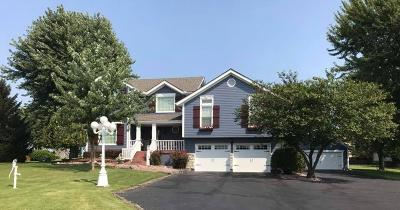 Lee's Summit MO Single Family Home For Sale: $469,000