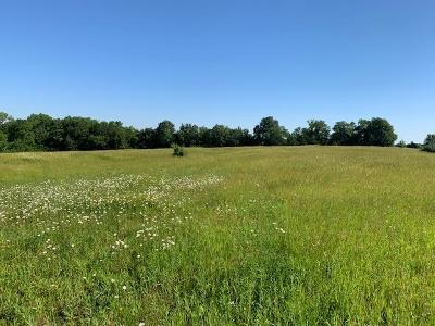 Clinton County Residential Lots & Land For Sale: 11.59 S 69 Highway