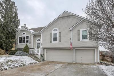 Lee's Summit Single Family Home For Sale: 1116 NE Woodbury Court
