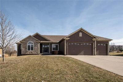 Belton MO Single Family Home For Sale: $369,900