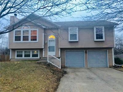 Lee's Summit Single Family Home For Sale: 505 SE Onyx Drive