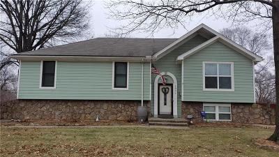 Shawnee Single Family Home For Sale: 4831 Stearns Lane