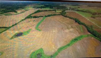 Daviess County Residential Lots & Land For Sale: Bb Hwy Highway