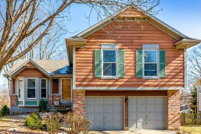 Merriam Single Family Home For Sale: 4753 Hayes Street