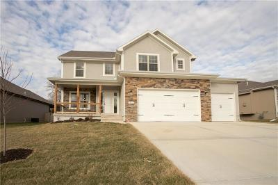 Grain Valley Single Family Home For Sale: 1408 Red Oak Court