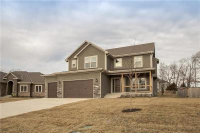 Grain Valley Single Family Home For Sale: 1404 Red Oak Court