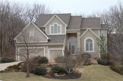Olathe Single Family Home For Sale: 26310 W Cedar Niles Circle