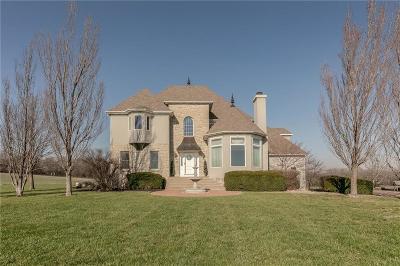 Johnson-KS County Single Family Home For Sale: 17070 Edgerton Road