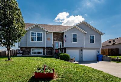 Leavenworth County Single Family Home For Sale: 937 N Hickory Drive