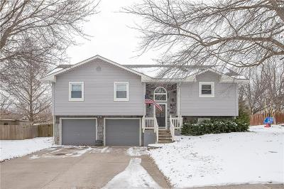 Lee's Summit MO Single Family Home For Sale: $199,000