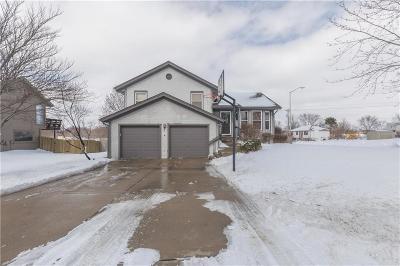 Kansas City Single Family Home For Sale: 212 NE 103rd Terrace