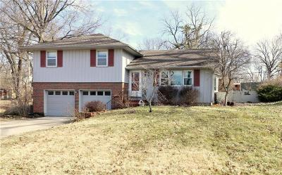 Kansas City Single Family Home For Sale: 9017 Main Street