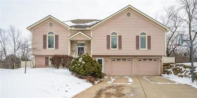 Lee's Summit Single Family Home For Sale: 2424 NE Carousel Circle