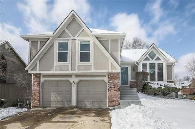 Shawnee Single Family Home For Sale: 4744 Roundtree Court