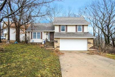 Lenexa Single Family Home For Sale: 7838 Darnell Street