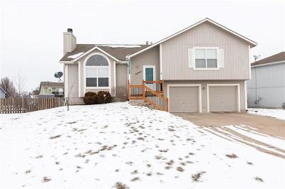 Gardner Single Family Home For Sale: 32626 W 173 Street