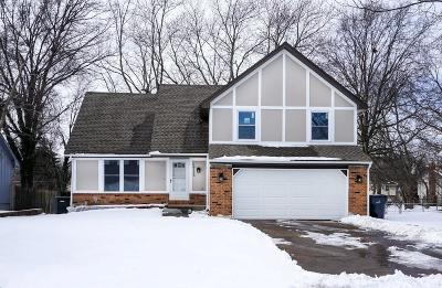 Single Family Home For Sale: 1713 S Kiowa Drive
