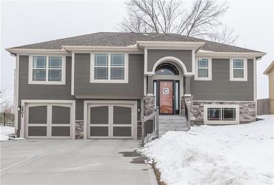 Smithville Single Family Home For Sale: 1501 NE 196th Street