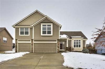 Smithville Single Family Home For Sale: 610 Wright Valley Road