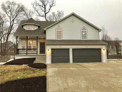 Kansas City Single Family Home For Sale: 8758 N Chatham Avenue