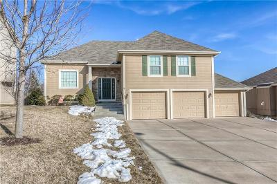 Lansing Single Family Home For Sale: 1307 Stone Lane