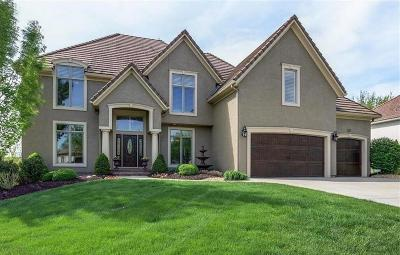 Johnson-KS County Single Family Home For Sale: 20301 W 92nd Street