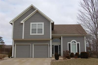 Spring Hill Single Family Home Show For Backups: 21180 W 226th Street