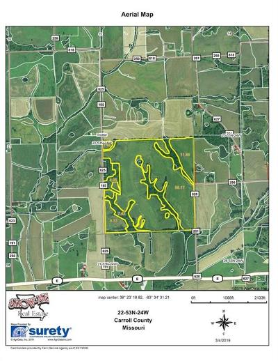 Carroll County Residential Lots & Land For Sale: 201 Road