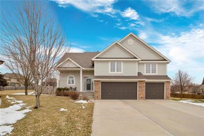 Kansas City Single Family Home For Sale: 9105 N Kansas Court