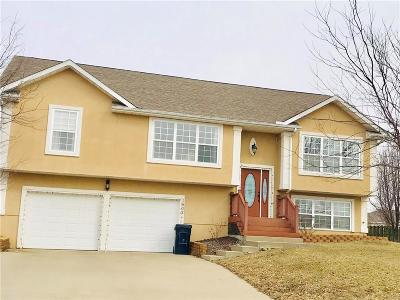 Knob Noster Single Family Home For Sale: 1502 W 7th Street Terrace