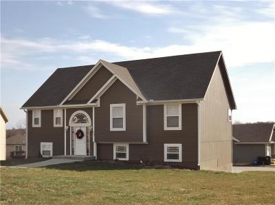 Warrensburg MO Single Family Home For Sale: $225,000