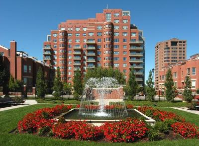 Condo/Townhouse Show For Backups: 4950 Central Street #905