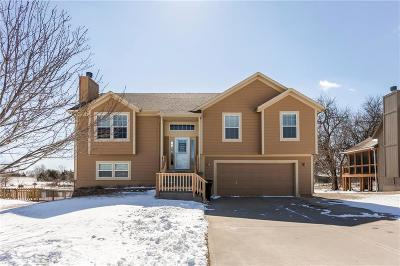 Spring Hill Single Family Home Show For Backups: 20563 W 221st Street