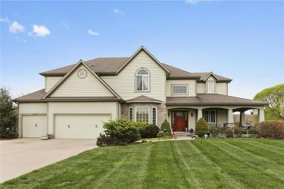 Kansas City Single Family Home For Sale: 9306 E Pleasant Avenue