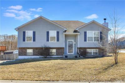 Grain Valley Single Family Home For Sale: 521 SW Lakeview Drive