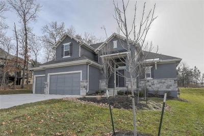 Johnson-KS County Single Family Home For Sale: 21103 W 68th Street