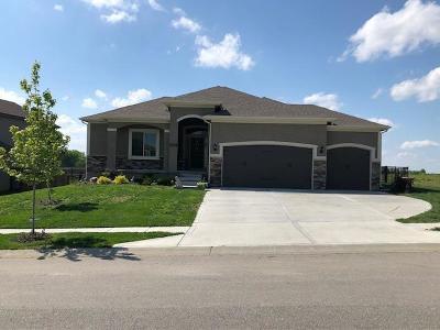 Kansas City Single Family Home For Sale: 11200 N Brooklyn Avenue