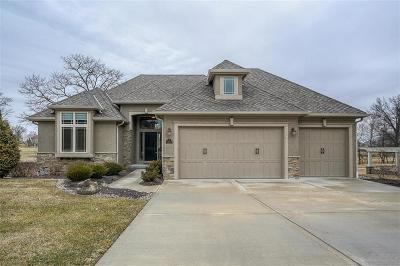 Kansas City Single Family Home Show For Backups: 6100 NW 104th Terrace