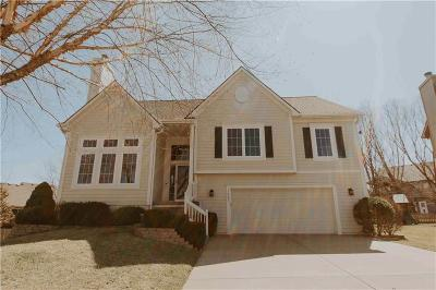 Olathe Single Family Home For Sale: 16545 W 155th Place