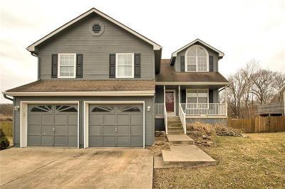 Jackson County Single Family Home Show For Backups: 19301 E 34th Terrace