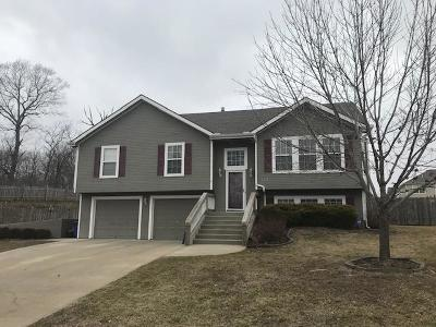 Leavenworth County Single Family Home For Sale: 4104 Richmond Drive