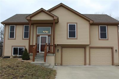 Grain Valley Single Family Home For Sale: 1409 NE Amanda Jean Way