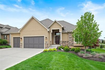 Overland Park Single Family Home For Sale: 12209 W 160th Street