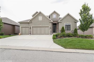 Overland Park Single Family Home Show For Backups: 13408 W 172nd Street