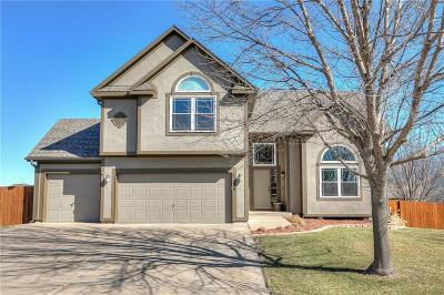 Kansas City Single Family Home For Sale: 12118 Augusta Drive