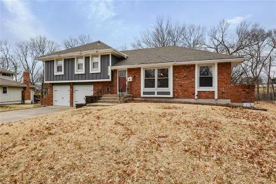 Kansas City Single Family Home For Sale: 10421 Grand Avenue
